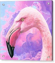 Think Pink Flamingo Acrylic Print