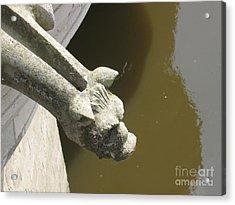 Thirsty Gargoyle Acrylic Print