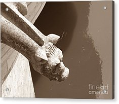 Acrylic Print featuring the photograph Thirsty Gargoyle - Sepia by HEVi FineArt