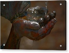 Acrylic Print featuring the photograph Thirsty by Leticia Latocki