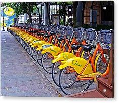 Thirty Yellow Bicycles In Taipei Acrylic Print by Tony Crehan