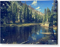 This Beautiful Solitude Acrylic Print by Laurie Search