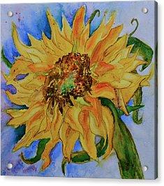 This Here Sunflower Acrylic Print