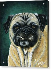 This Is My Happy Face - Pug Dog Painting Acrylic Print