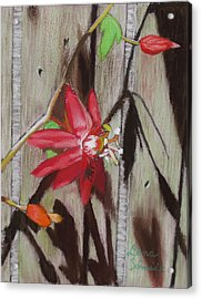 This Is My Passion - Flowers Acrylic Print