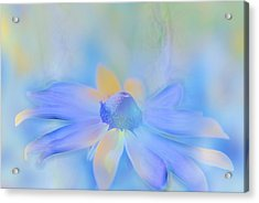 This Is Not Just Another Flower - S05a Acrylic Print by Variance Collections