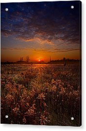 This Time Around Acrylic Print by Phil Koch