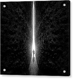This Way Acrylic Print
