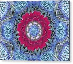 Thistle Portal Mandala Acrylic Print