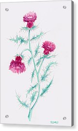Acrylic Print featuring the painting Thistle by Rebecca Davis