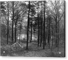 Thoreau Walden Pond Acrylic Print