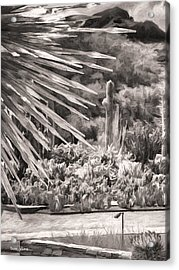 Thorns Of Glass  Bw Acrylic Print