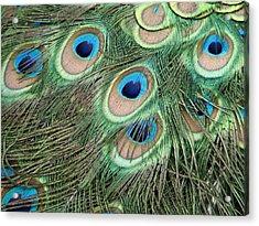 Those Danger Eyes Acrylic Print