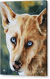 Those Eyes Acrylic Print