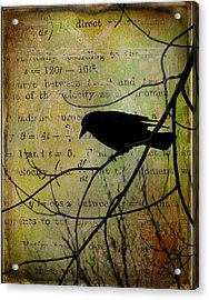 Thoughts Of Crow Acrylic Print