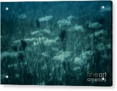 Thoughts Of Yesteryear  Acrylic Print by Cathy  Beharriell
