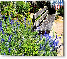 Thoughts On The Weathered Bench Acrylic Print by Pamela Hyde Wilson