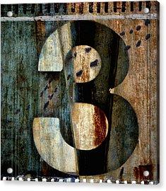 Three Along The Way Acrylic Print by Carol Leigh