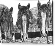 Three Amigos Acrylic Print by Glen Powell