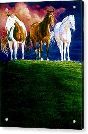 Three Amigos Acrylic Print by Hanne Lore Koehler