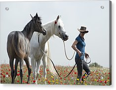 Three At The Poppies' Field... 1 Acrylic Print