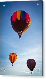 Three Balloons Acrylic Print by Inge Johnsson