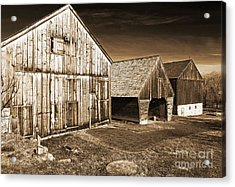 Three Barns Acrylic Print by John Rizzuto