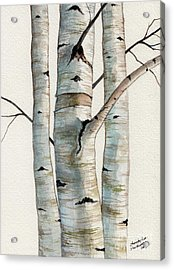 Three Birch Trees Acrylic Print