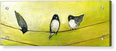 Three Birds On A Wire No 2 Acrylic Print by Jennifer Lommers
