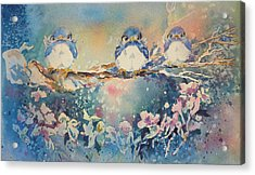 Three Blue Birds Acrylic Print