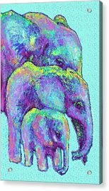 Three Blue Elephants Acrylic Print