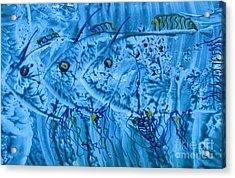 Acrylic Print featuring the mixed media Three Blue Fish by Patricia Januszkiewicz