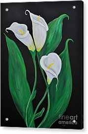 Acrylic Print featuring the painting Three Calla Lilies On Black by Janice Rae Pariza