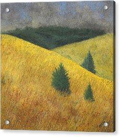 Three Cedars Acrylic Print by Garry McMichael
