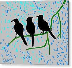 Three Crows Acrylic Print by Anand Swaroop Manchiraju