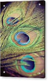 Three Feathers Acrylic Print