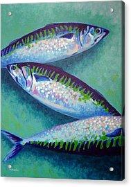 Three Mackerel Acrylic Print by John  Nolan