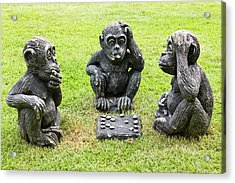 Three Monkeys Playing Checkers Acrylic Print by Tosporn Preede