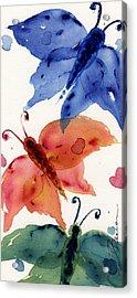 Three Moths II Acrylic Print by Dawn Derman