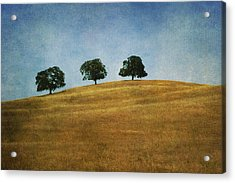 Three On A Hill Acrylic Print