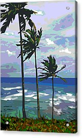 Three Palms Acrylic Print by Douglas Simonson