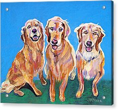 Three Playful Goldens Acrylic Print by Julie Maas