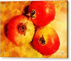 Three Pomegranates Acrylic Print by Mary Machare