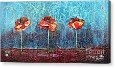Three Poppies Acrylic Print by Shadia Derbyshire