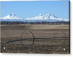 Three Sisters Mountains Acrylic Print by Linda Larson