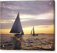 Three Skipjacks Dredging Oysters At Dawn Acrylic Print