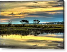 Acrylic Print featuring the photograph Three Tree Sunset by Ed Roberts
