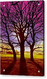 Acrylic Print featuring the digital art Three Trees by David Davies