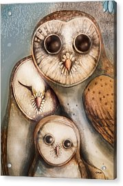 Three Wise Owls Acrylic Print by Karin Taylor