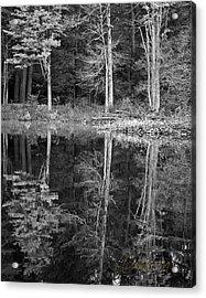Threes Acrylic Print by Tom Cameron